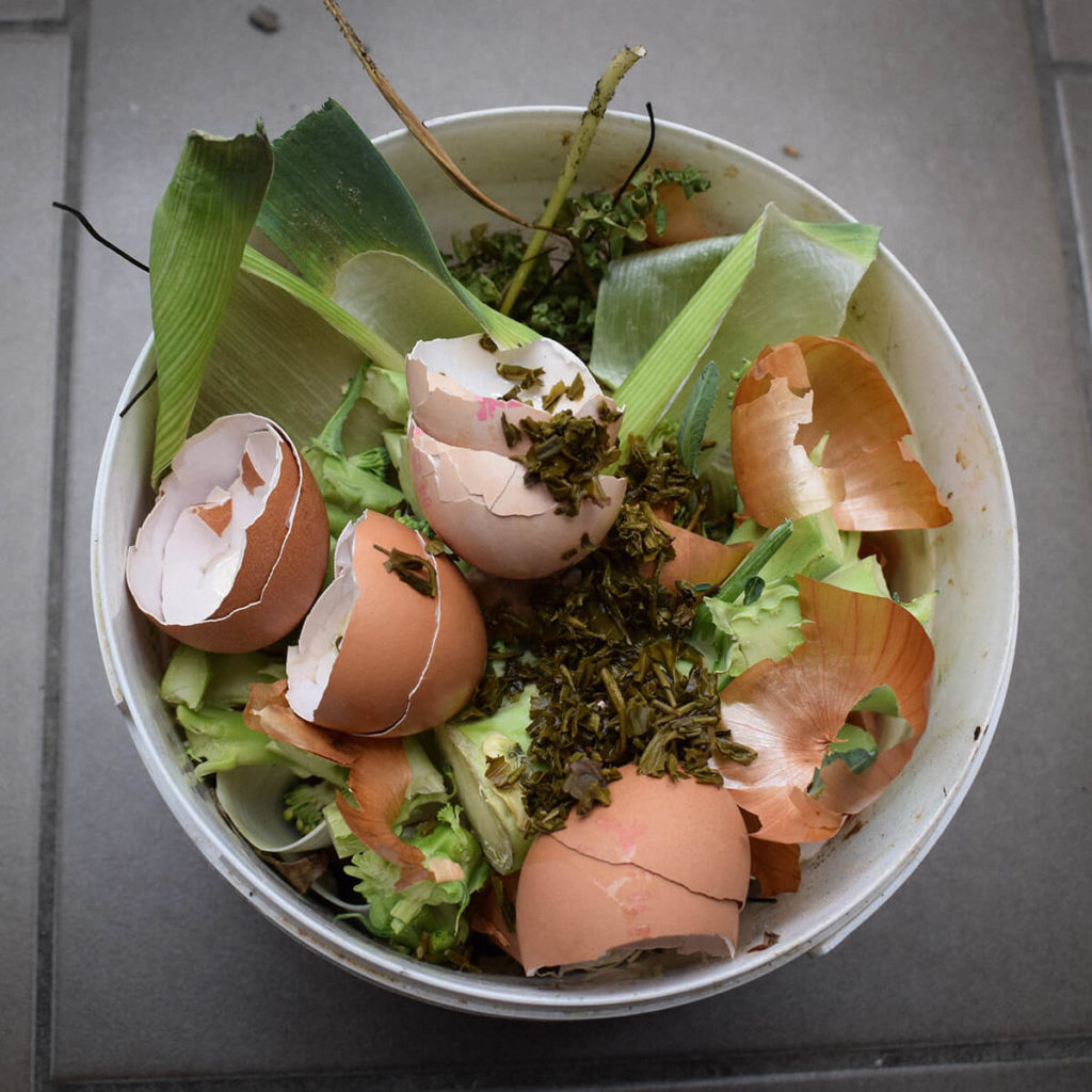 Bucket with food waste in