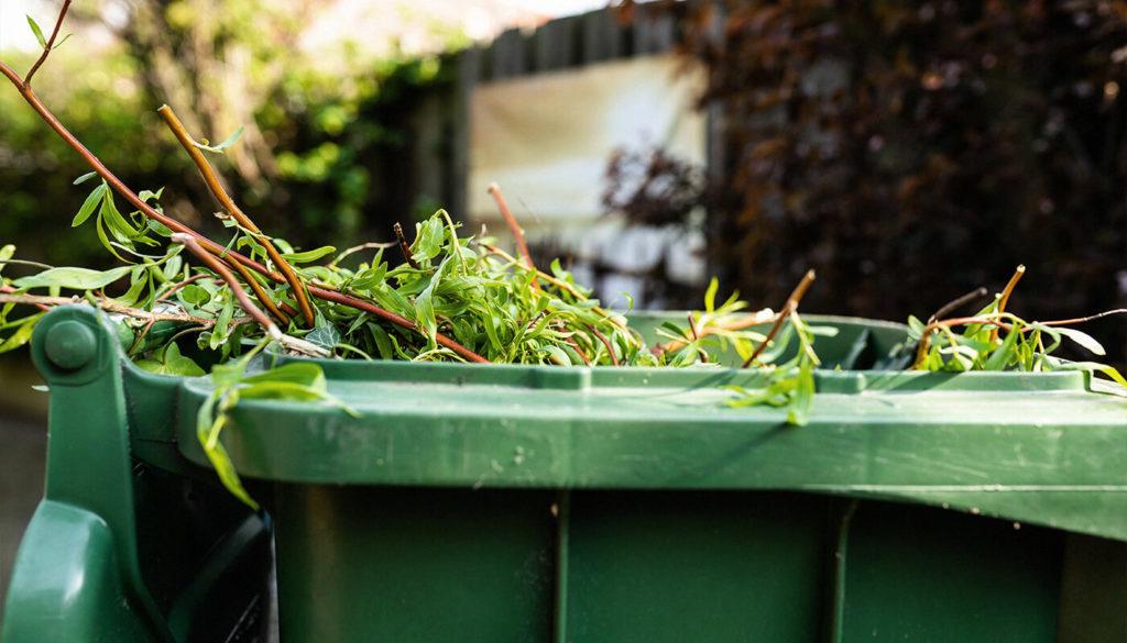 Garden waste bin with garden waste in